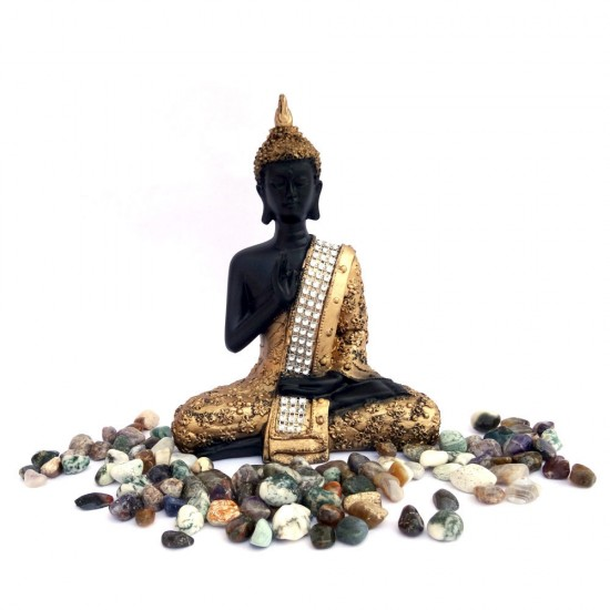Feng Shui Black & Gold Painted Blessing Posture Buddha Statue